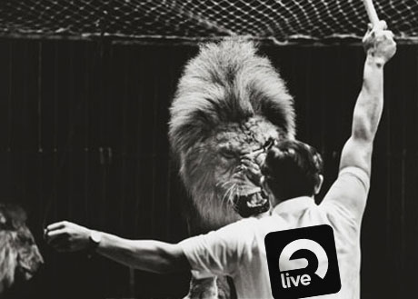 ableton live update lion